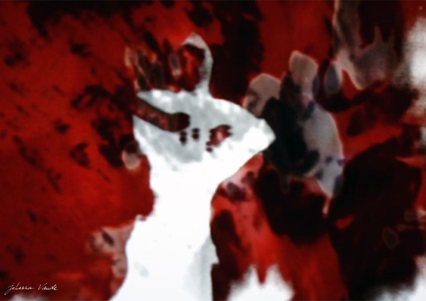 johanna-vaude-samourai-experimental-film_02