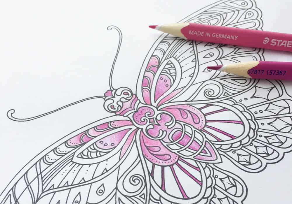 Ivy And The Inky Butterfly Download And Colouring