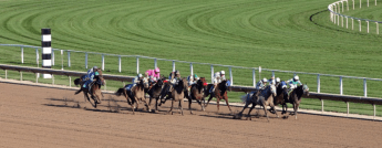 horse race games, betting