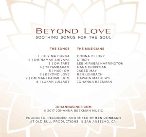 Beyond Love back cover