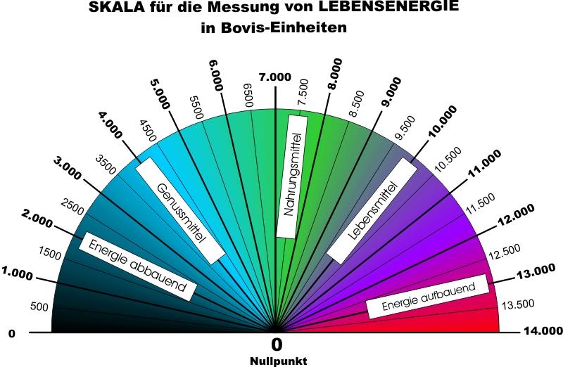 Bovisscala