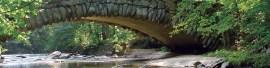 Quiet Spring in Rock Creek Park