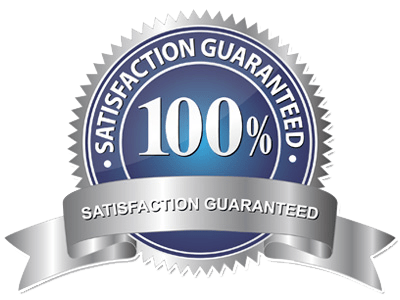 100-graphic