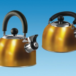 PLS SU310 – GOLD 1.6 Litre Gas Hob Kettle with Folding Handle