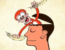 Cum să îți dresezi maimuța pe timp de Coronavirus ca să nu o iei razna stând în autoizolare la domiciliu