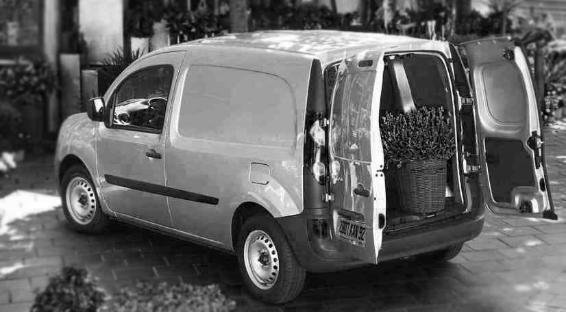 Deliveries Car