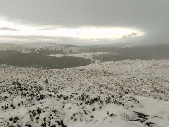 Snow ness2