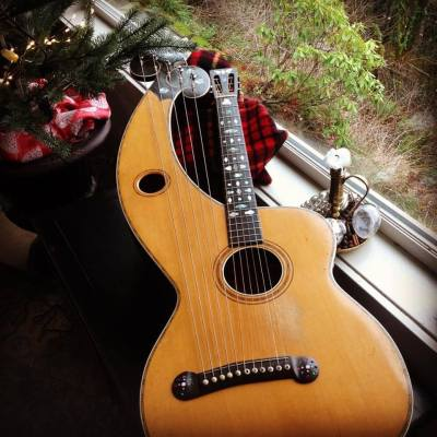 dyer-harp-guitar-and-tree