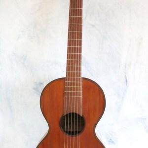 Guitar Stauffer 1