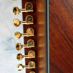 harp-guitar-ukraine-9