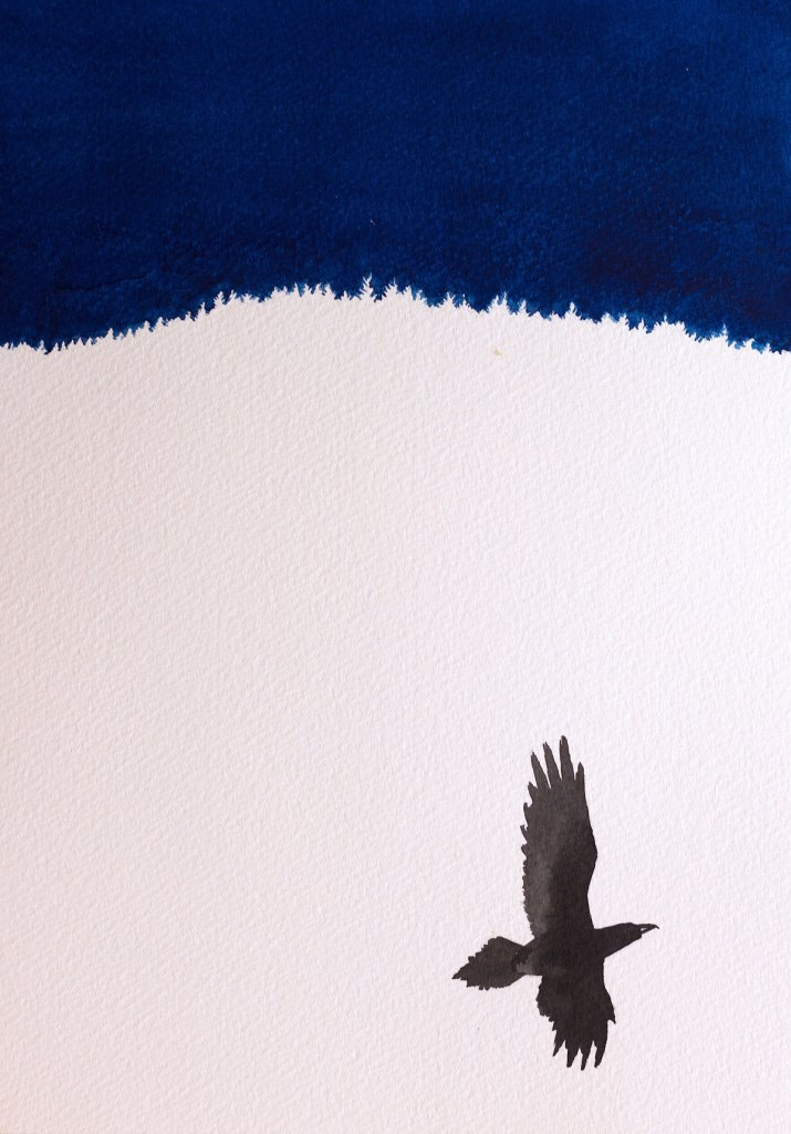Watercolour painting of a Raven over a valley in Wales at night