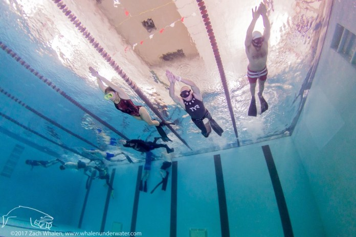Boston East Coast Freedivers training in the pool