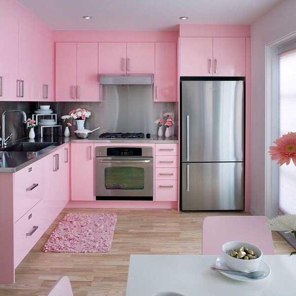 Flamingo Pink kitchen color