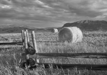 hay bales fence foreground