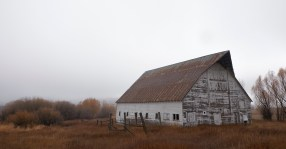 river road barn in mist color