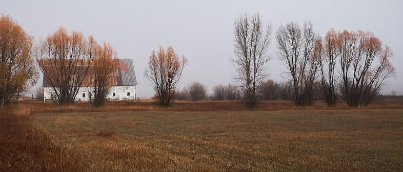 river road barn color