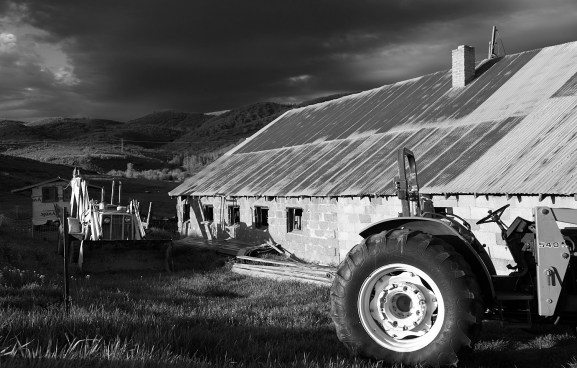 129 family farm b & w no 1