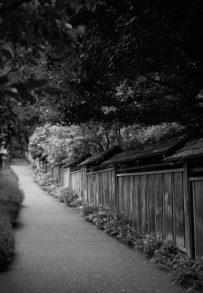 butchart fence