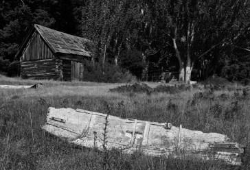 cabbage cabin no 1