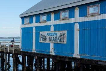 fresh fish market
