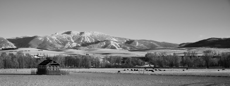 lower elk river valley vista