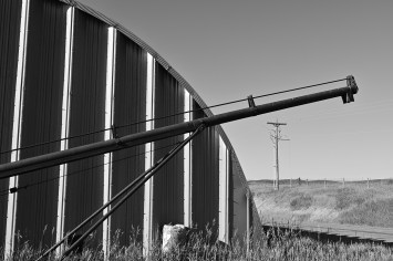 metal shed lines