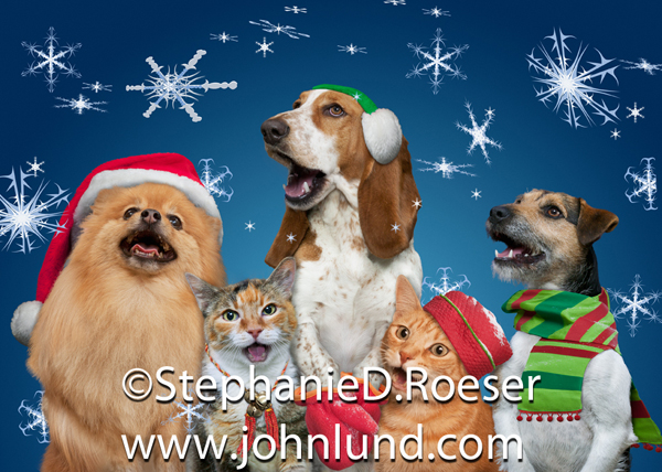Funny Dogs And Cats Singing A Christmas Carol Together As