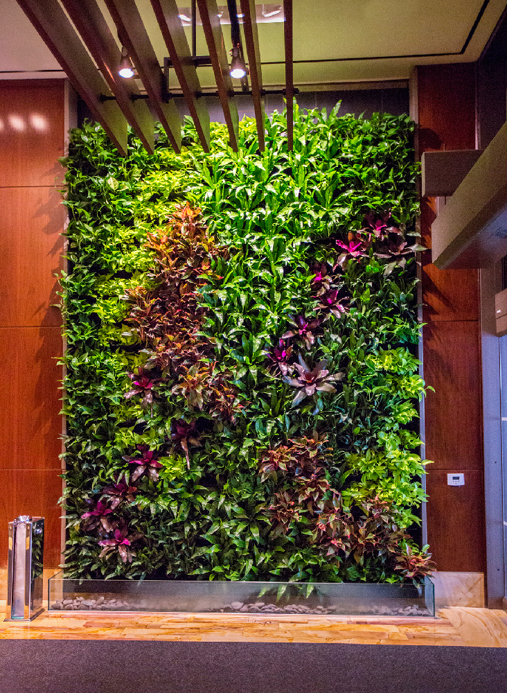What is Indoor Landscaping  John Mini