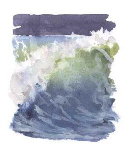 surf 2c copy