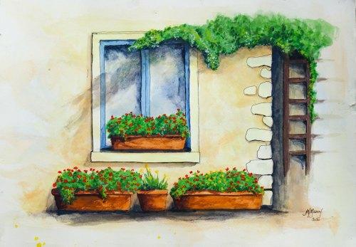 Italian Flower Boxes
