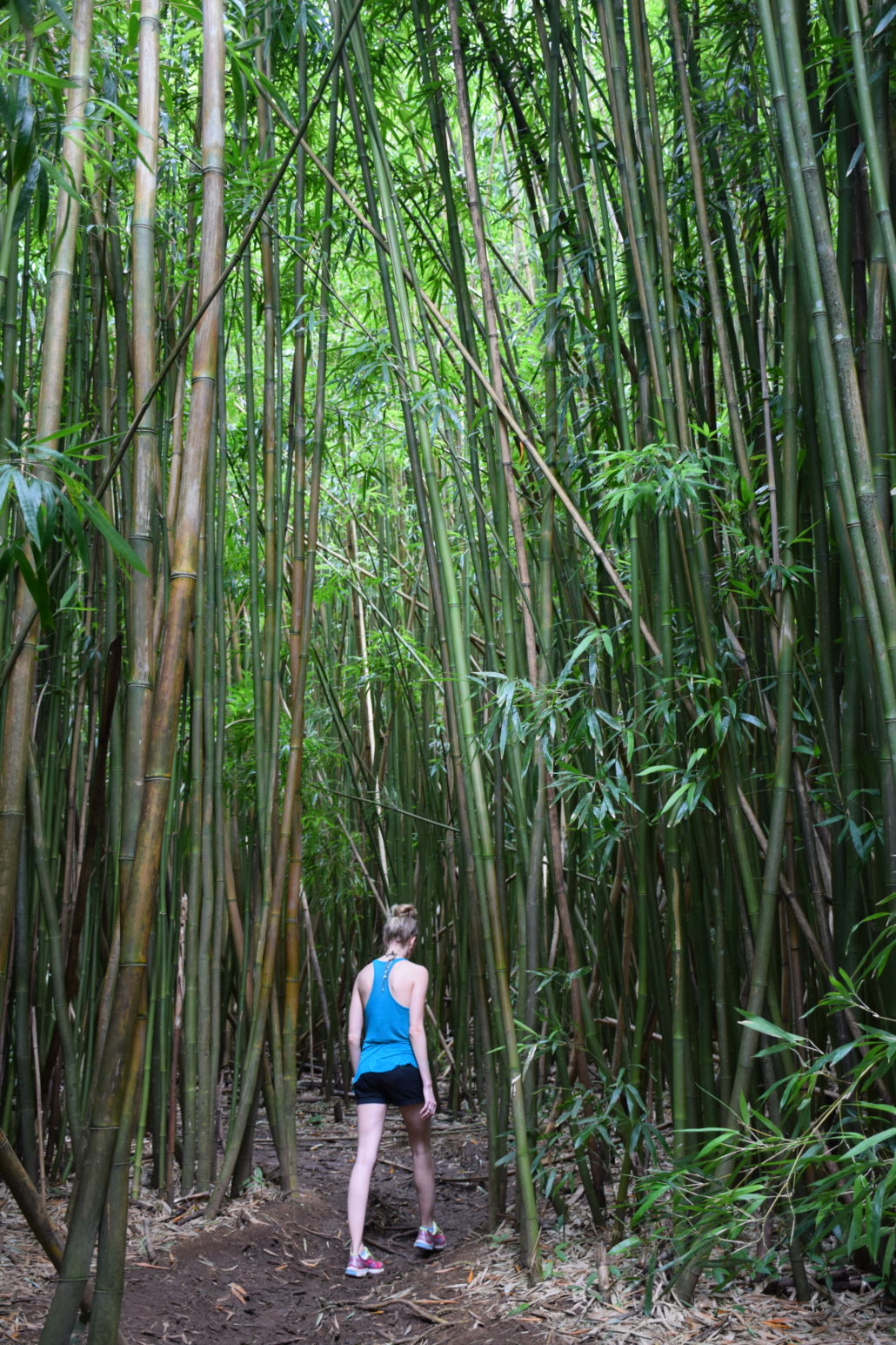 Bamboo Falls hike on the Road to Hana