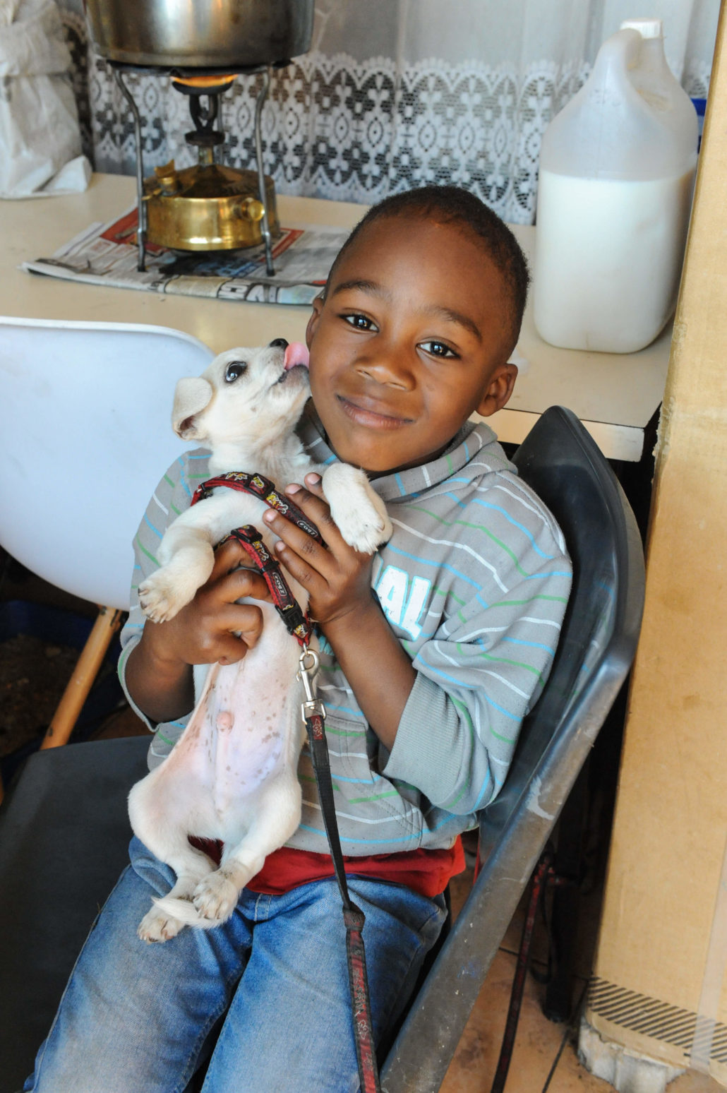 Boy enjoying his puppy at Tumi's home in Alexandra township