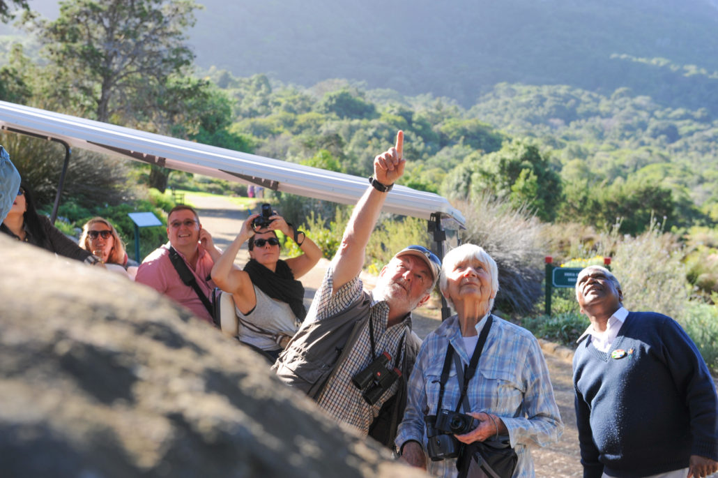 Visitors pointing out an owl in a tree at Kirstenbosch National Botanical Garden