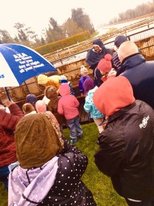 Umbrellas at the ready at the Johnny Magory Spring Adventure Day!