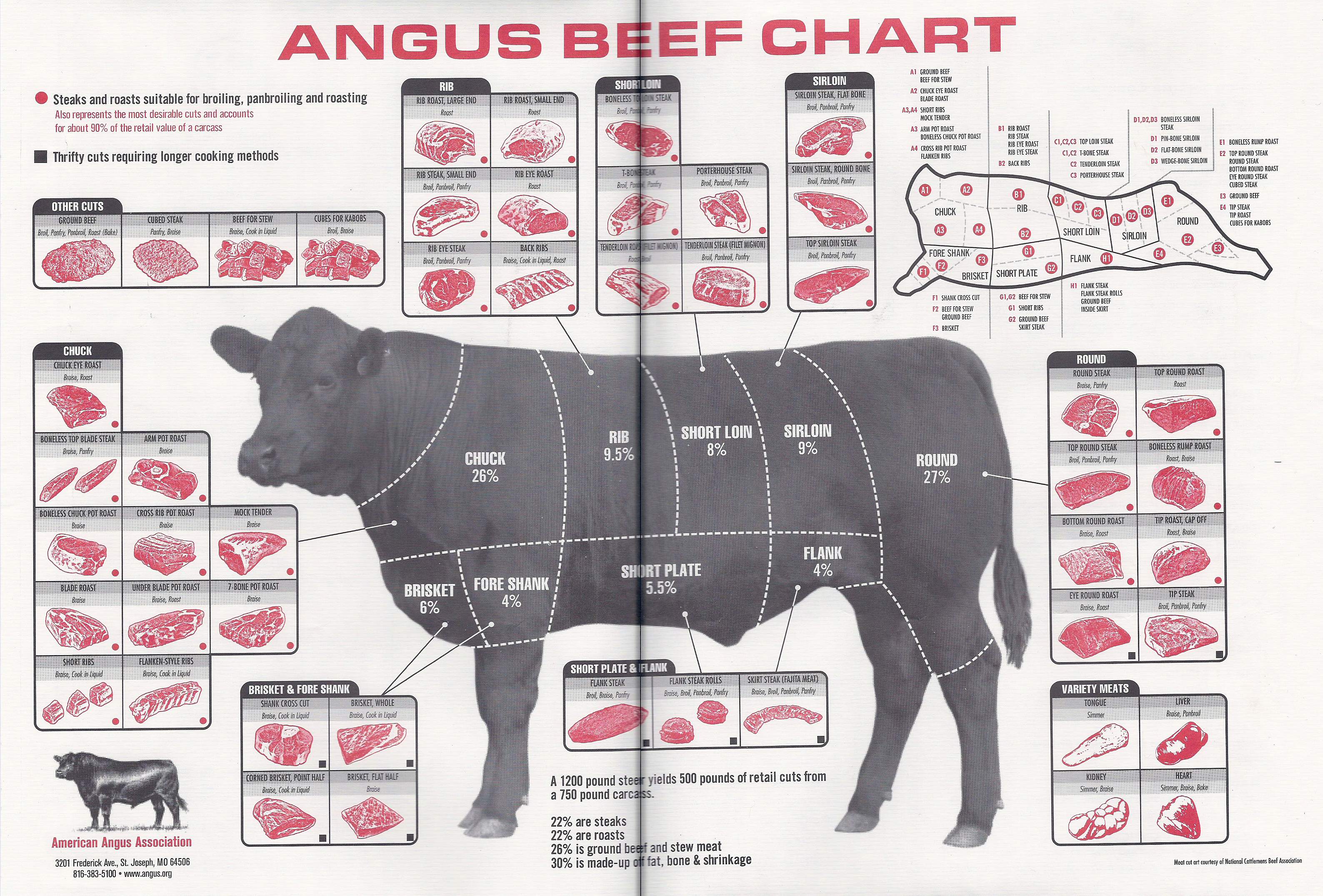 beef cuts diagram of cow 2003 honda crv door lock wiring meat 102 anatomy and preparation johnny prime