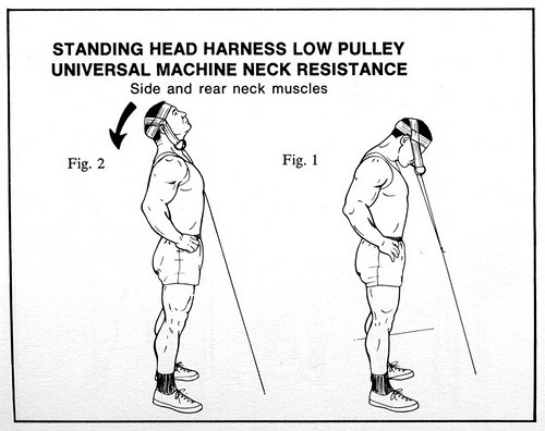 neck-harness-low-pulley