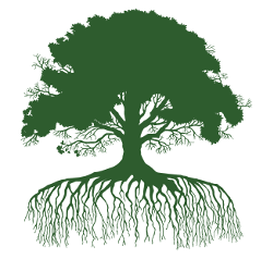 oak tree silhouette lt green 250