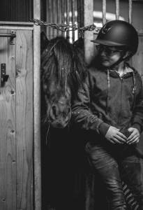 häst i bås