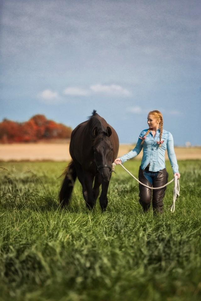 Hästporträtt fotograf