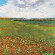 """Grafing Field, 36""""x24"""" oil on canvas"""