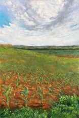 "Grafing Field, 36""x24"" oil on canvas"