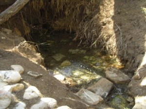 Baptism Site-1