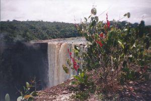Kaietur with flora