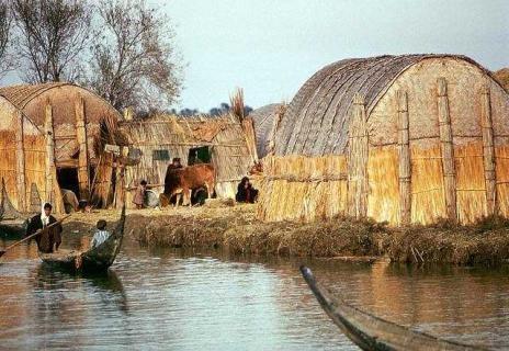 Iraq South Marshlands 4a