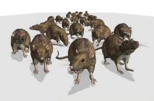 An army of rats is approaching - I hope the cat is ready! 3D render with digital painting.
