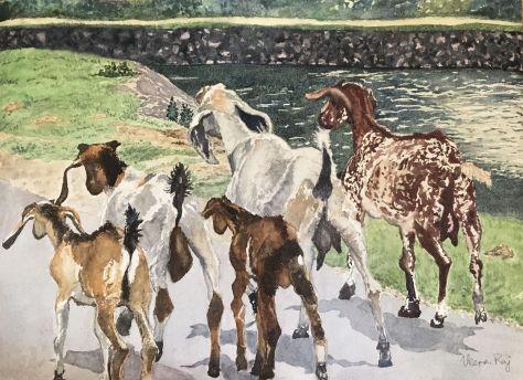 Goats Do Roam  Veena Raj