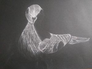 Pigeon Vianne C. -Teen Drawing & Painting