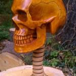 Life Sized, Anatomically Correct HumanSkull