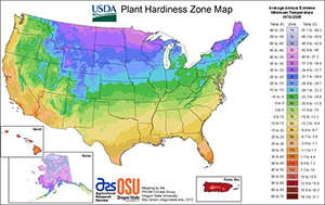 Hardiness Zones Can Be Confusing