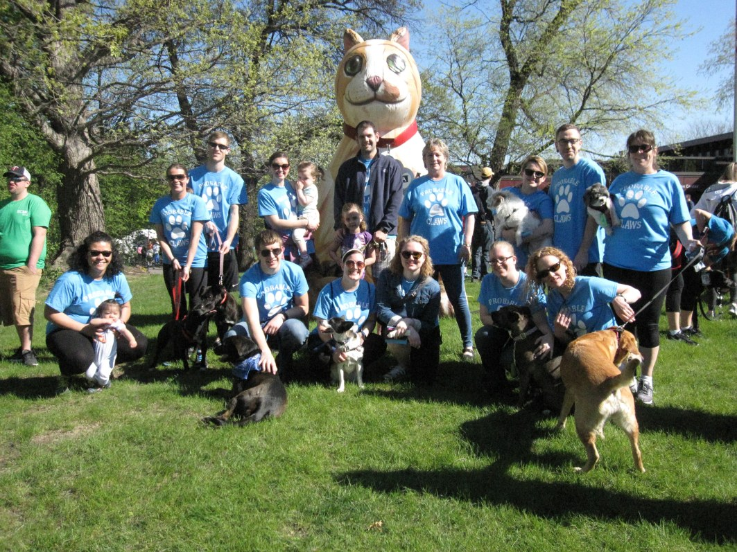 johnson becker walk for animals
